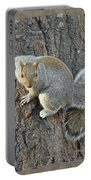 Gray Squirrel - Sciurus Carolinensis Portable Battery Charger