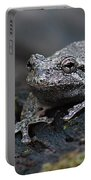 Gray Treefrog On A Log Portable Battery Charger