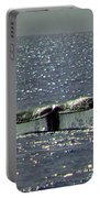 Gray Whale Portable Battery Charger