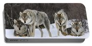 Gray Wolves Norway Portable Battery Charger