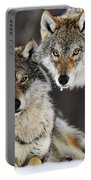 Gray Wolf Canis Lupus Pair In The Snow Portable Battery Charger