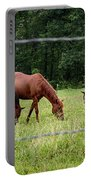 Grazing Horses - Cades Cove - Great Smoky Mountains Tennessee Portable Battery Charger