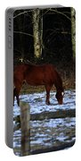 Grazing In A Washington Winter Portable Battery Charger