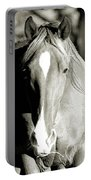 Grazing Mare - Southern Indiana Portable Battery Charger