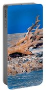 Great Blue Driftwood Portable Battery Charger