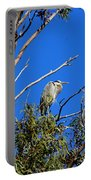 Great Blue Heron In Eucalyptus Tree Portable Battery Charger
