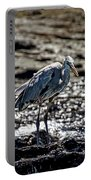 Great Blue Heron In Galapagos Portable Battery Charger