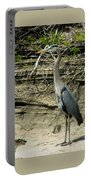 Great Blue Heron In Ozarks Portable Battery Charger