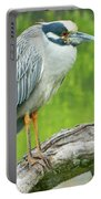 Great Blue Heron On Little Sarasota Bay Portable Battery Charger