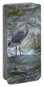 Great Blue Heron Standing In Stream Portable Battery Charger