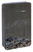 Great Blue Heron Wading 1 Portable Battery Charger
