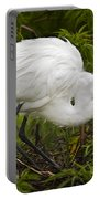Great Egret And Chick Portable Battery Charger