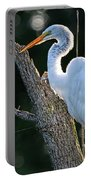 Great Egret At Rest Portable Battery Charger