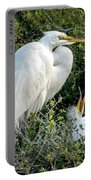 Great Egret Mom And Babies Portable Battery Charger