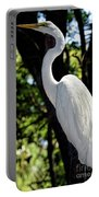 Great Egret Up Close Portable Battery Charger