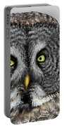 Great Gray Owl Portrait Portable Battery Charger