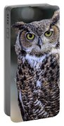 Great Horned Owl IIi Portable Battery Charger