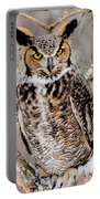 Great Horned Owl Nature Wear Portable Battery Charger