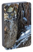 Great Horned Owl On Snowy Branch Portable Battery Charger