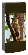 Great Horned Owl Wink Portable Battery Charger