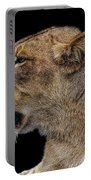 Great Lioness Portable Battery Charger