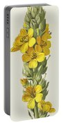 Great Mullein  Portable Battery Charger