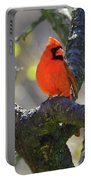 Great  Perch Male Northern Cardinal Portable Battery Charger