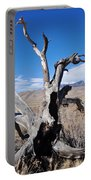 Great Sand Dunes National Park Fallen Tree Portrait Portable Battery Charger