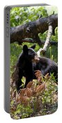 Great Smoky Mountain Bear Portable Battery Charger
