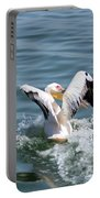 Great White Pelican In Flight Portable Battery Charger