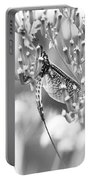 Great Wings  Black And White Dragonfly Portable Battery Charger