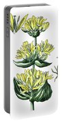 great yellow gentian, Gentiana lutea Portable Battery Charger