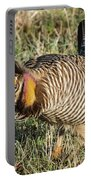 Greater Prairie Chicken Male 9 Portable Battery Charger