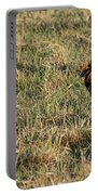 Greater Prairie Chicken Males 1 Portable Battery Charger