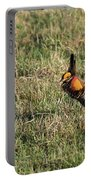 Greater Prairie Chicken Males 3 Portable Battery Charger