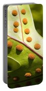Green And Orange Leaf Portable Battery Charger