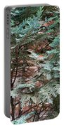Green And Red - Slender Cypress Branches Over Rough Roman Brick Wall Portable Battery Charger