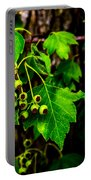 Green Berries Portable Battery Charger