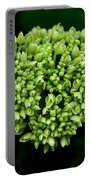 Green Bloom Portable Battery Charger
