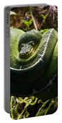 Green Boa Portable Battery Charger