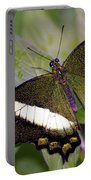 Green Butterfly Portable Battery Charger