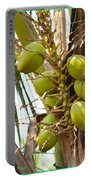 Green Coconut Portable Battery Charger