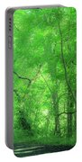 Green Creeper Portable Battery Charger