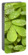 Green Portable Battery Charger