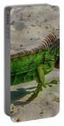 Green Dragon Portable Battery Charger