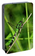 Green Dragonfly Portable Battery Charger
