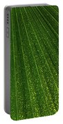 Green Fan - Radiating Lines And Scattered Polka-dots Portable Battery Charger