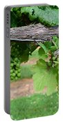 Green Grapes Portable Battery Charger