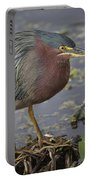 Green Heron 52 Portable Battery Charger