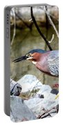 Green Heron . 7d614 Portable Battery Charger